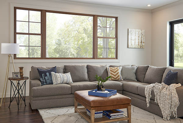 replacement windows in living room