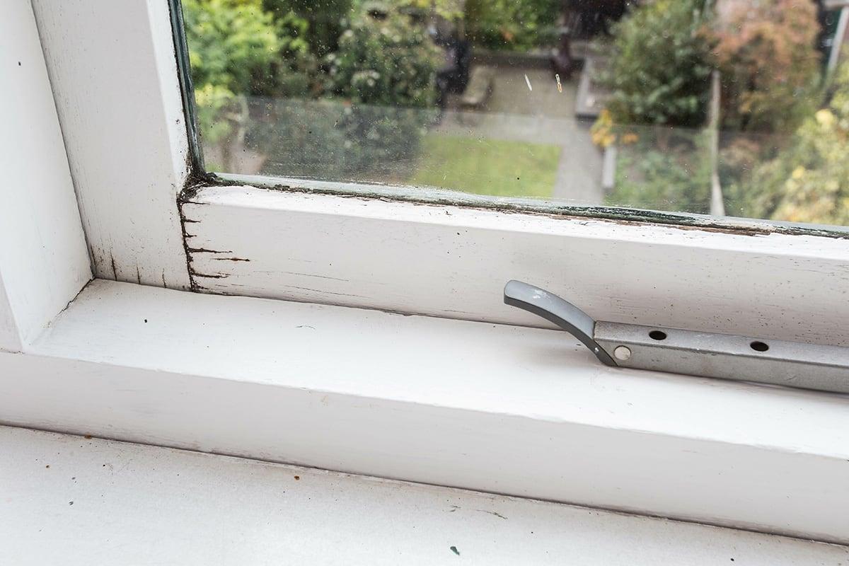 window frame rotting