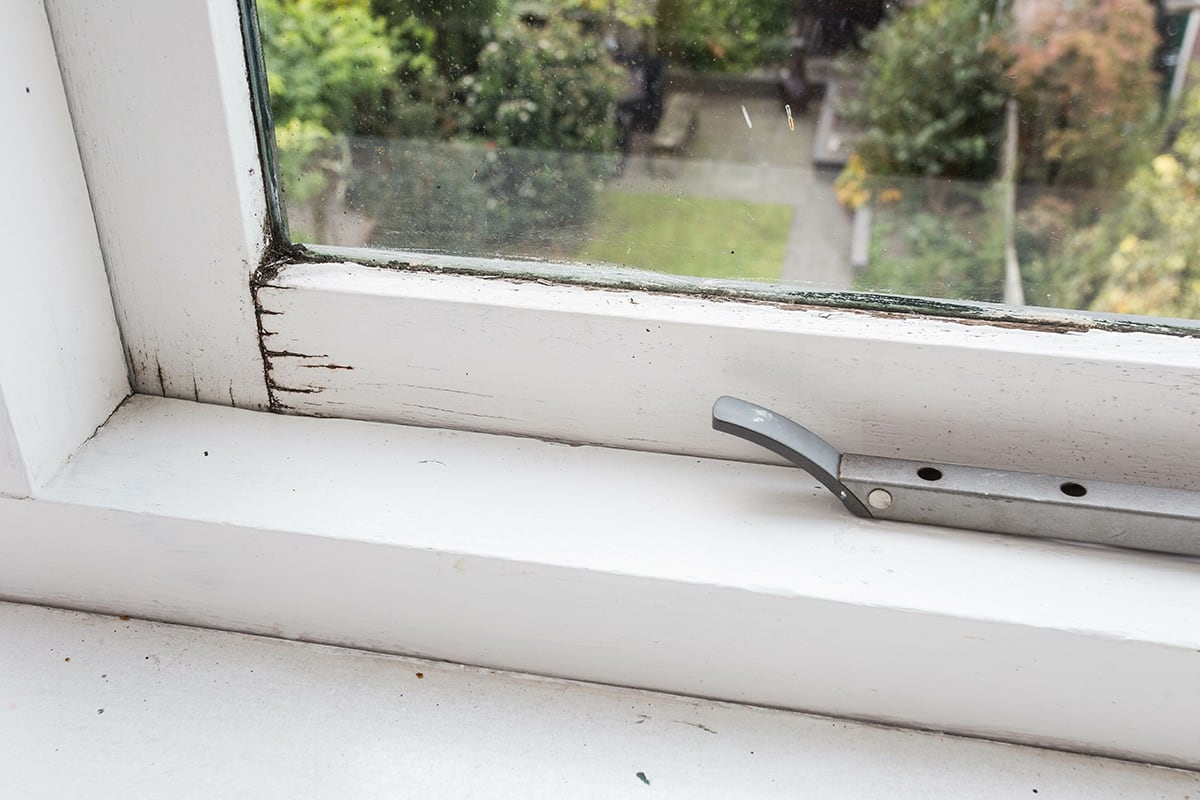 rotting window frame