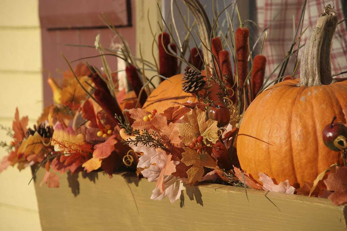 fall window box with pumpkins