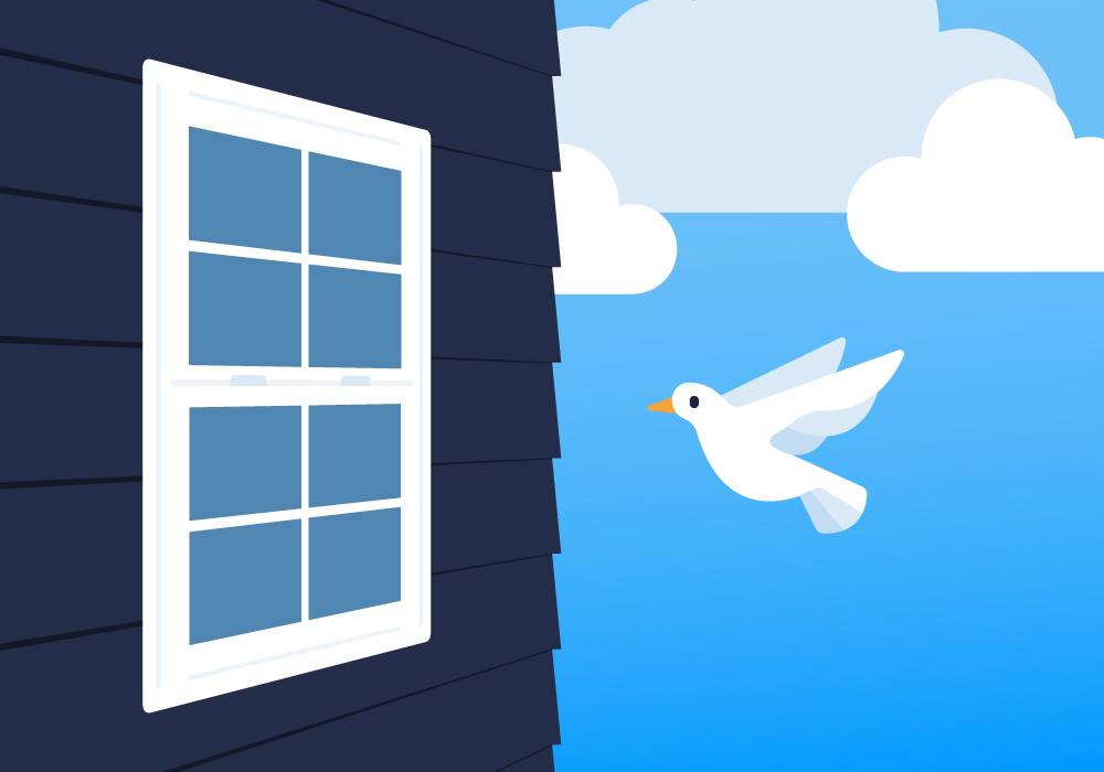 graphic of a white bird flying near a window on a home